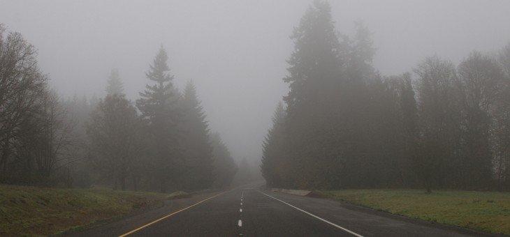 Misty road in Oregon