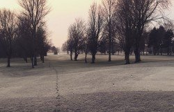 Frosty Footsteps
